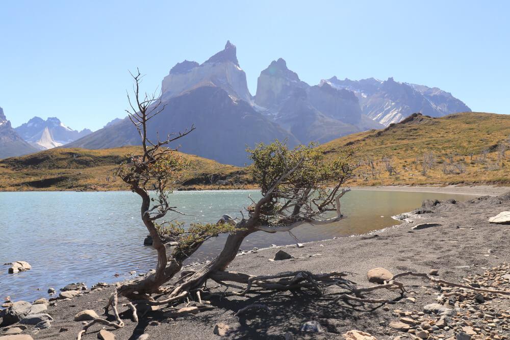 Strandabschnitt Wanderung Mirador Cuernos im Torres del Paine in Patagonien