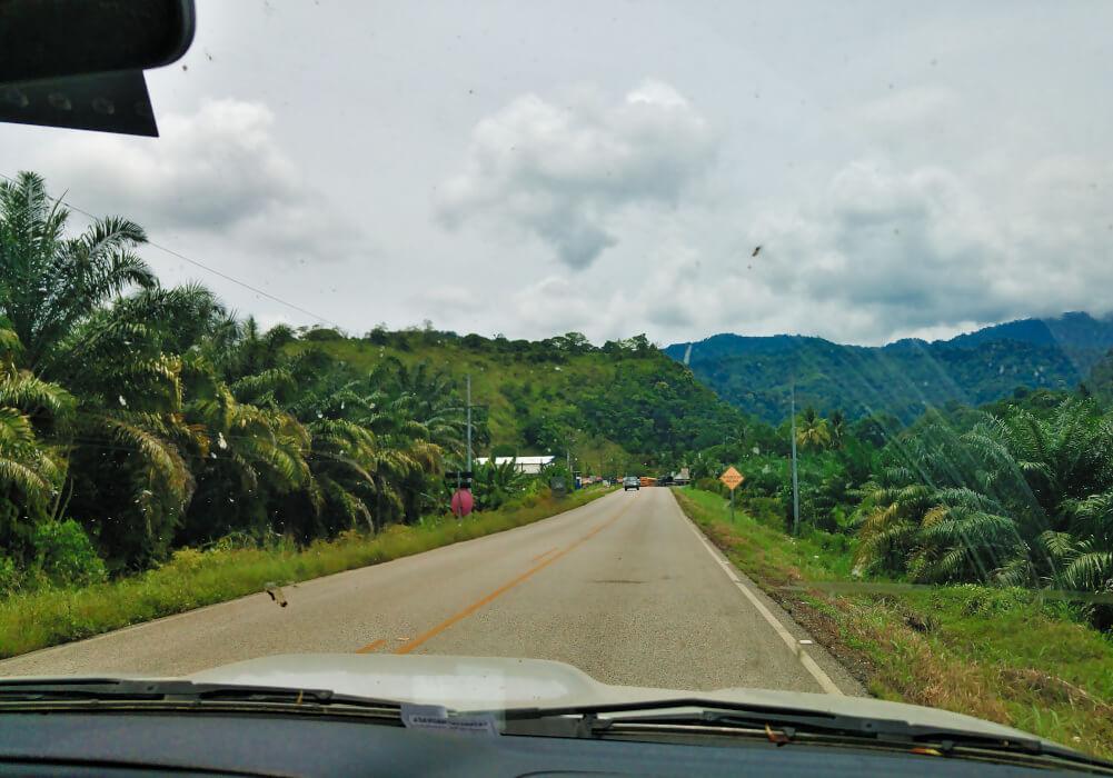 Blick aus dem Auto auf eine Straße in Costa Rica