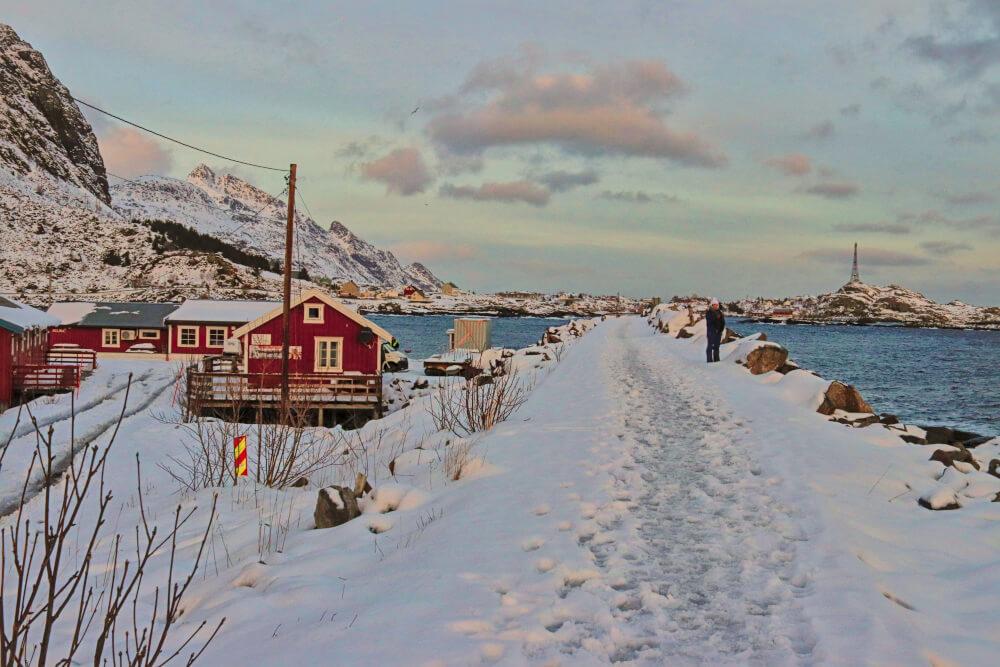 Robuers auf den Lofoten im Winter