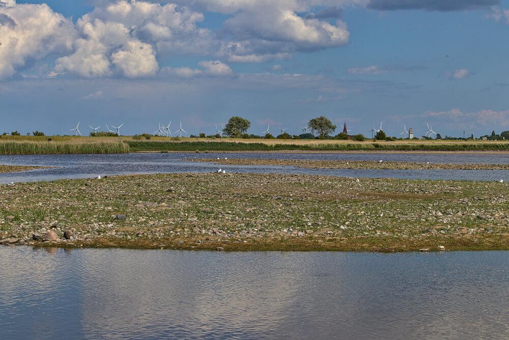 Wasservogelreservat Wallnau am Strand Bojendorf auf Fehmarn