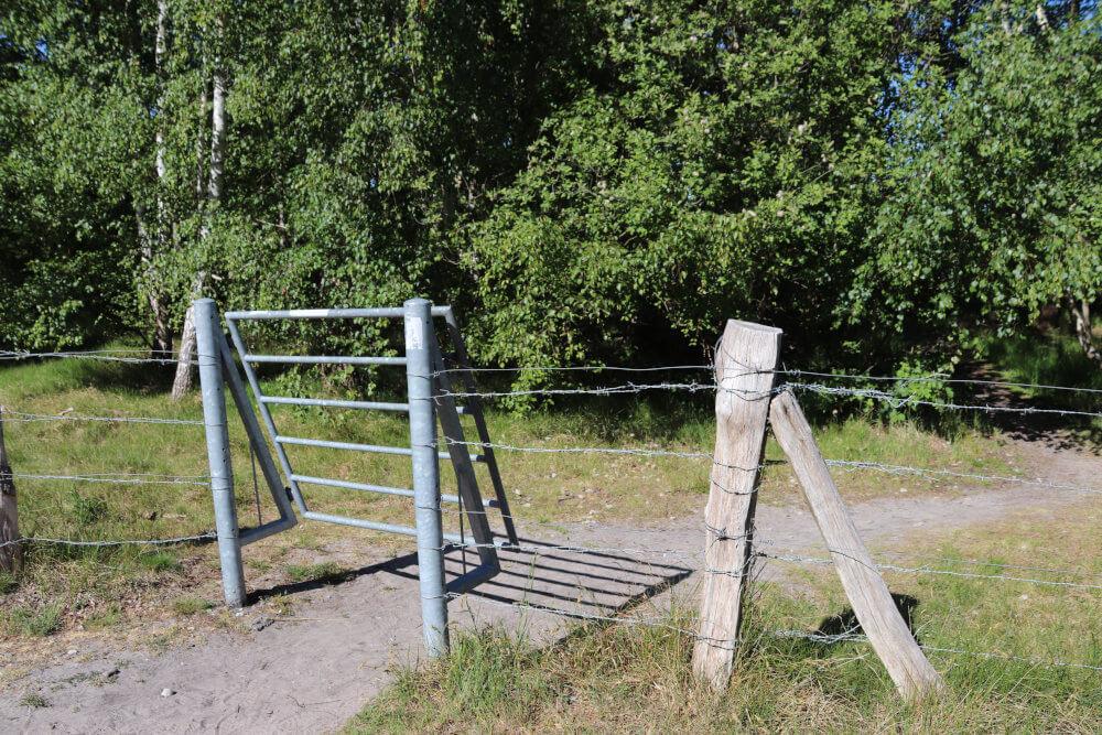 Ausflugstipps Fehmarn: Eingangstor Naturschutzgebiet Grüner Brink auf Fehmarn