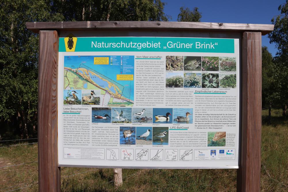 Infotafel am Naturschutzgebiet Grüner Brink auf Fehmarn