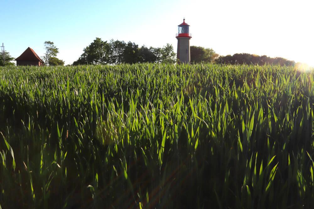 Ausflugstipps Fehmarn: Leuchtturm Staberhuk auf Fehmarn